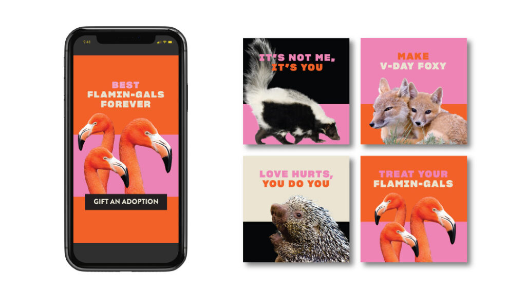 Fort Worth Zoo Social Graphics