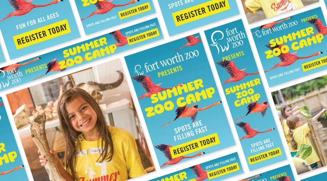 Summer Zoo Camp Paid Advertising